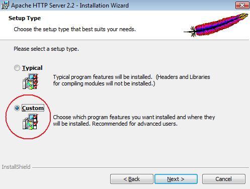 Select custom install